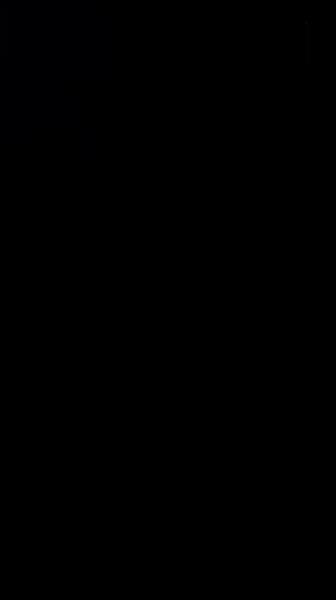 S132058 01