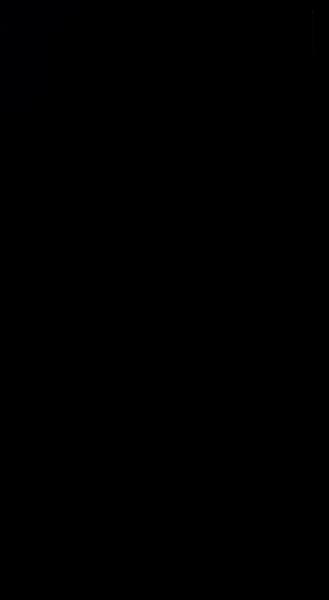 S129633 01