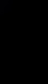 S117483 01
