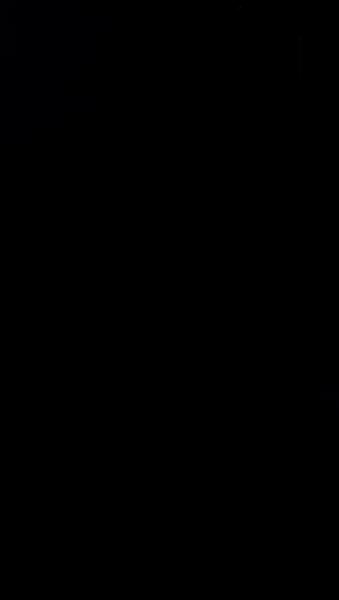 S126217 03