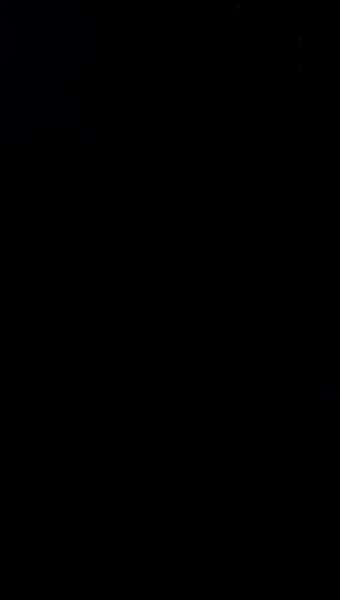 S126217 39