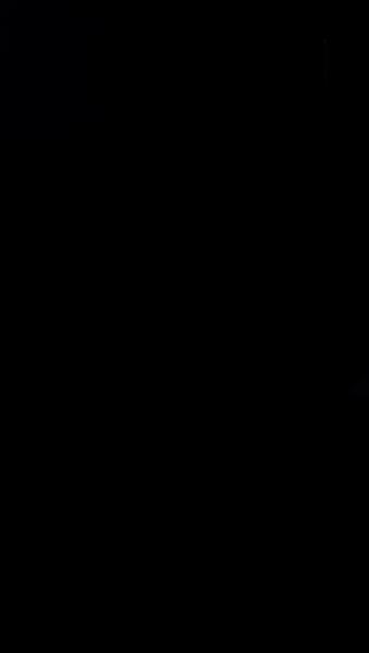 S130698 01