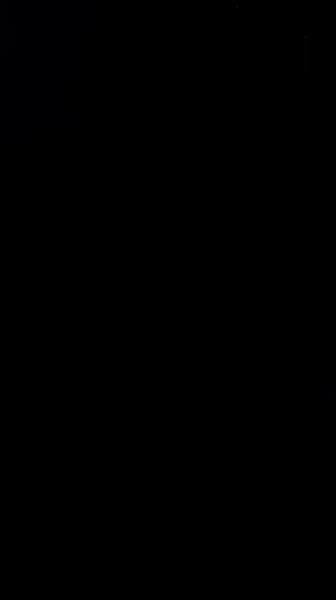 S130796 01