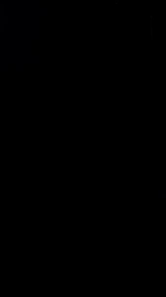 S130796 31