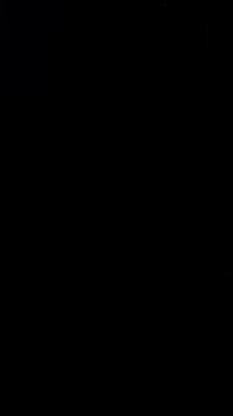 S131151 01