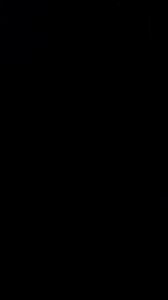 S131151 29