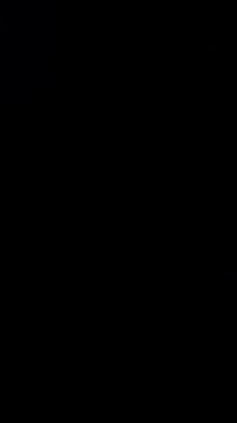 S108981 01