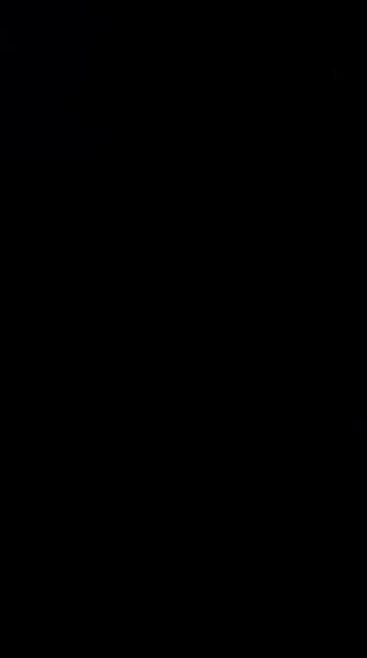 S133502 33