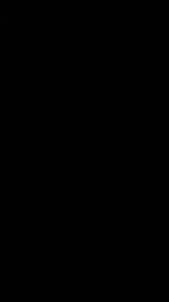 S117818 23