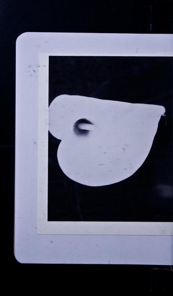 S146442 19