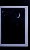 S152821 12