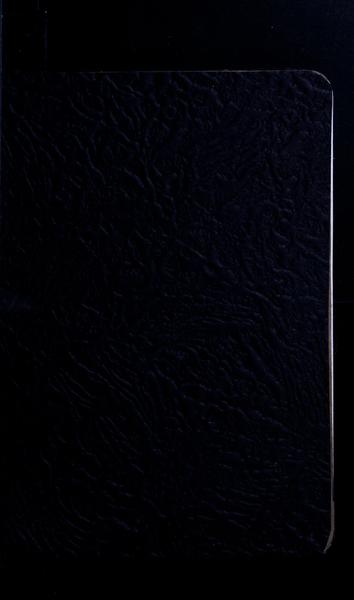 S135951 40