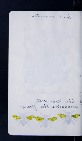 41492 09