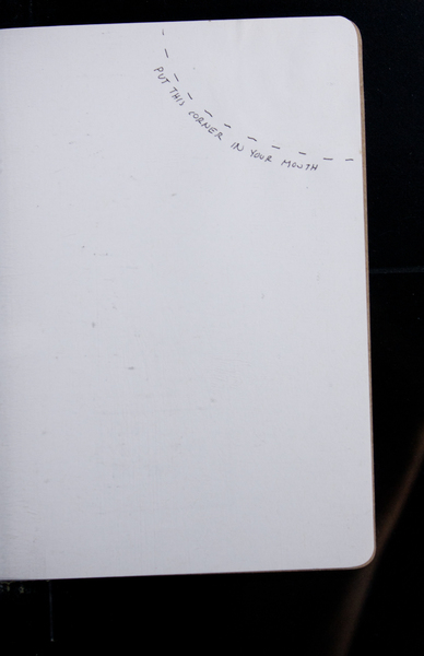 S153830 30