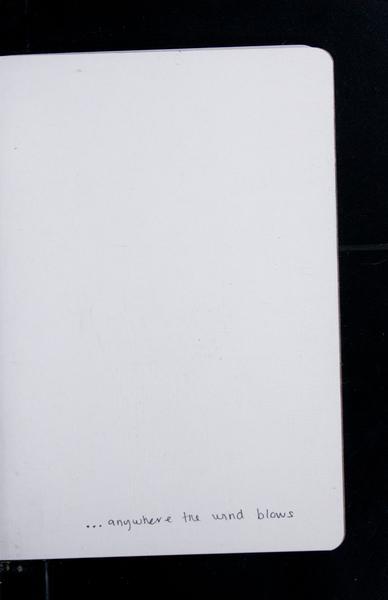 S161961 32