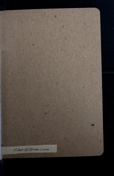 S161981 20