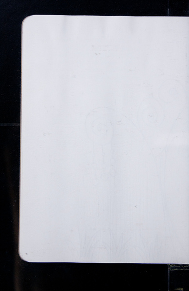 S155198 21