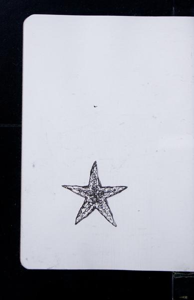 S156081 21