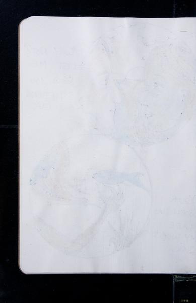 S163031 19