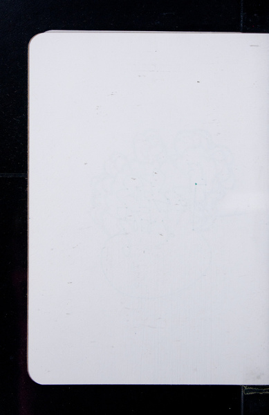 S163215 05