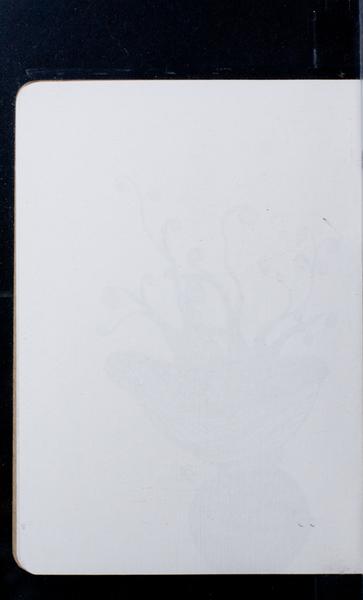 S167224 19