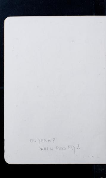 S164731 19