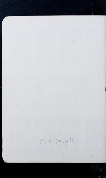 S164731 33