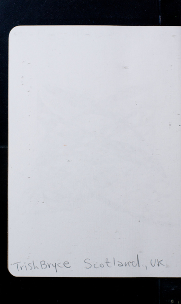 S167565 33