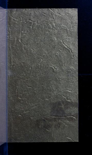 S164516 18