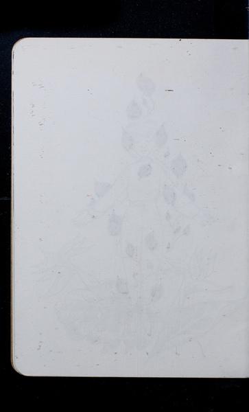 S166467 19