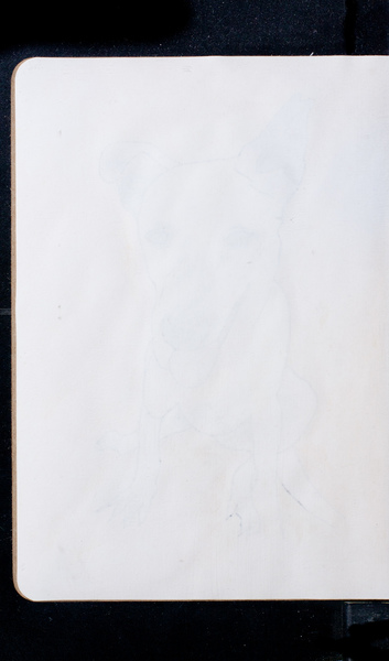 S169120 07