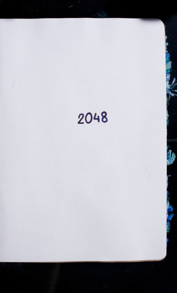 S175241 26