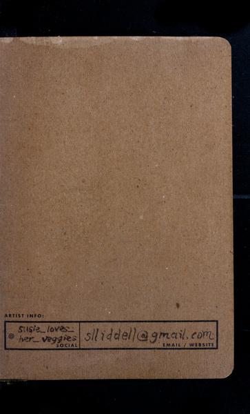 S171358 38