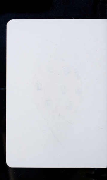 S212351 13