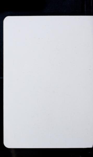 S173819 31