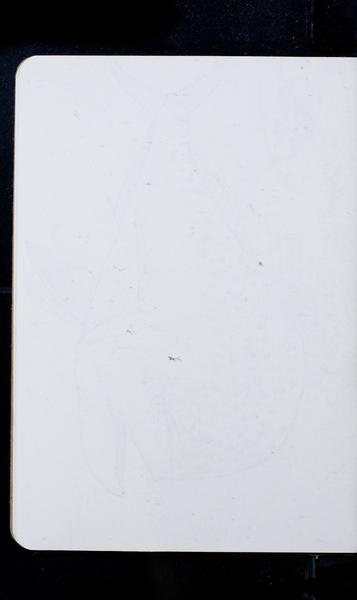 S176114 29