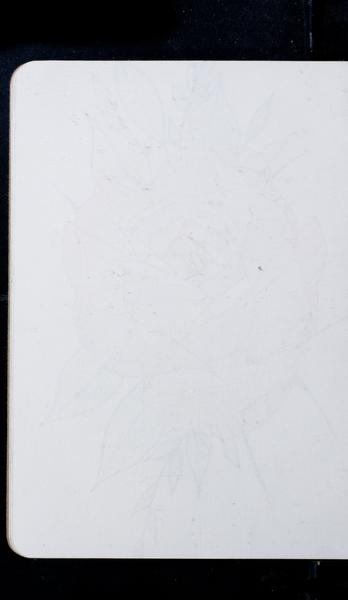 S210380 29