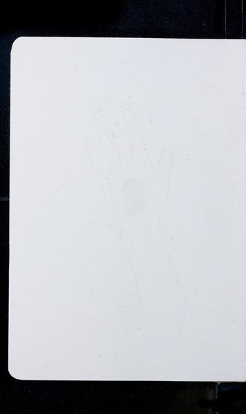 S210487 21