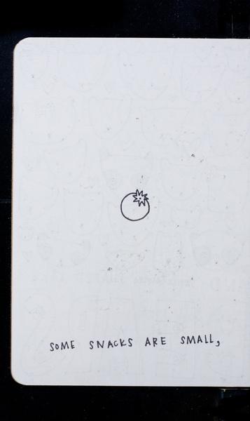 S213681 13
