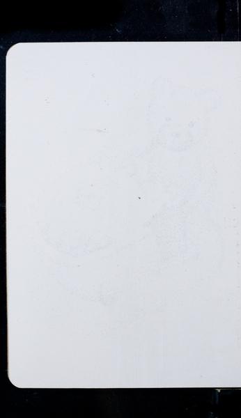 S176254 21