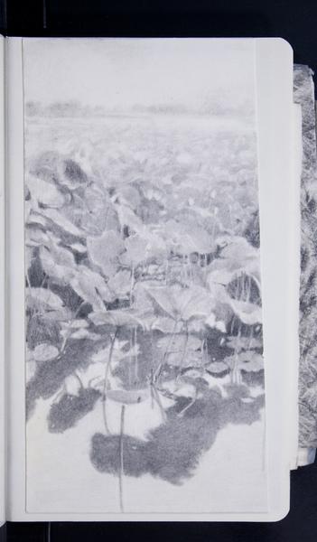 19246 52