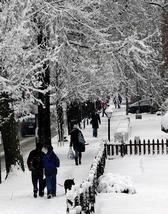 Q_street_winter_1
