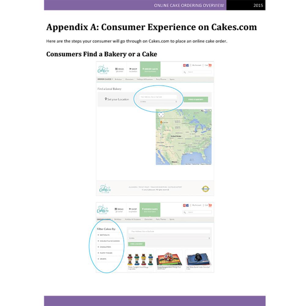 Appendix: Customer Experience