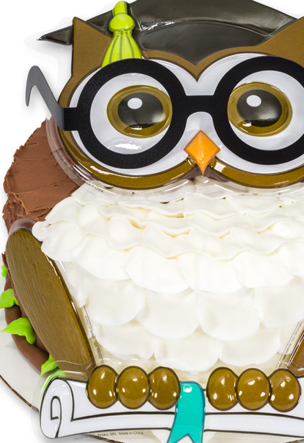 How-to Make an Owl of Knowledge Graduation Cake