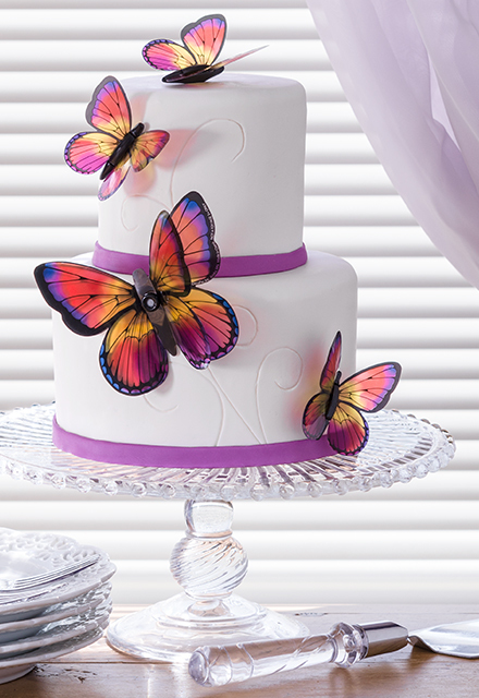 How-To Make a 2-Tier Garden Butterfly Cake