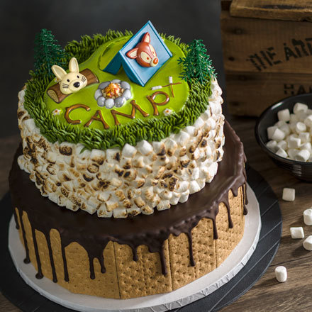 How-To Make a 2-Tier S'mores Camping Cake