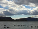 Casey Monroe, Storm King from Long Dock Park
