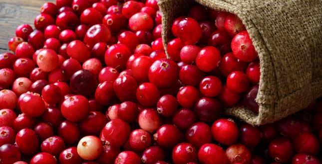 Cranberry om urinewegen gezond  houden & blaasontstekingen te voorkomen