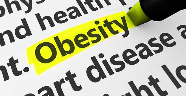 Taurine draagt bij tot het voorkomen van obesitas