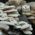 now-forager-original-soundtrack-by-brokaw-chris-lp